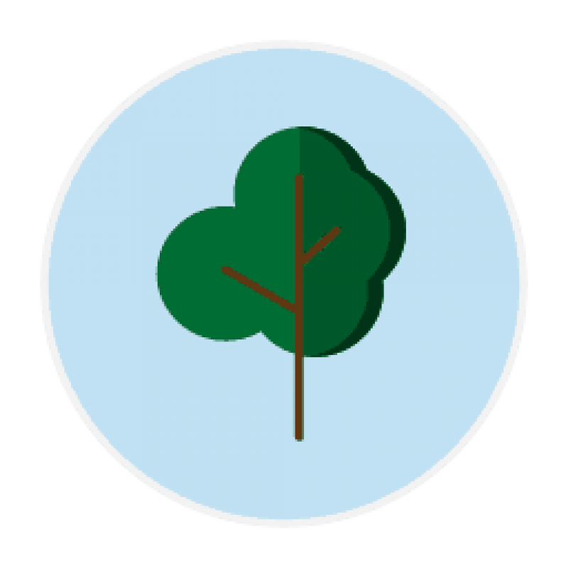 icon for memory care page